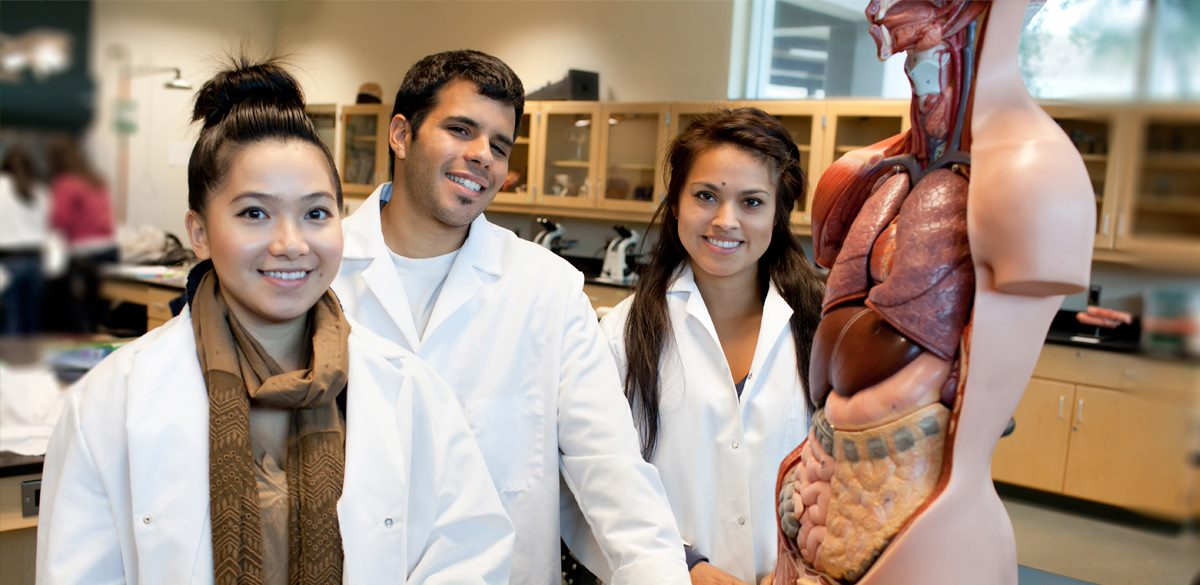 Lab students in anatomy class