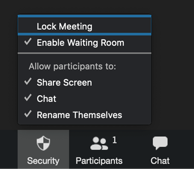 Screenshot of security options in Zoom