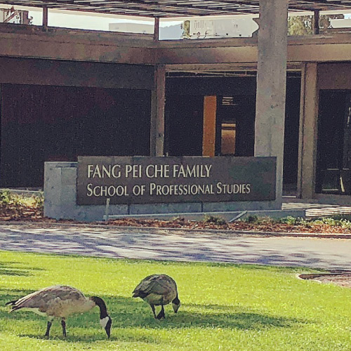Two geese in front of the Che building