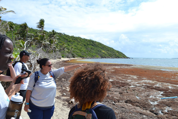 Service Learning students along Puerto Rican coast