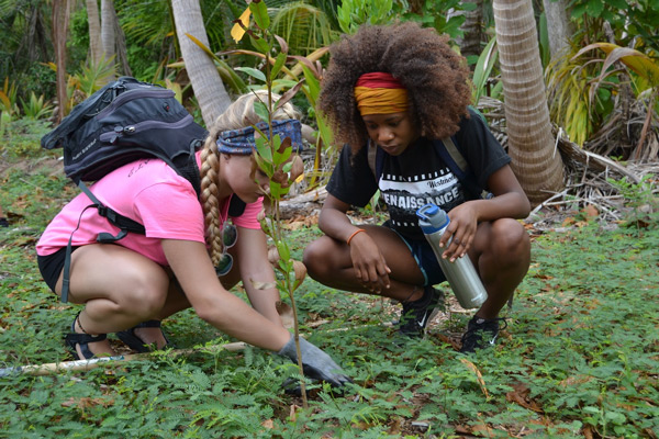 Service Learning student planting in Puerto Rico