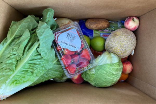 Box of groceries with fruits and vegetables